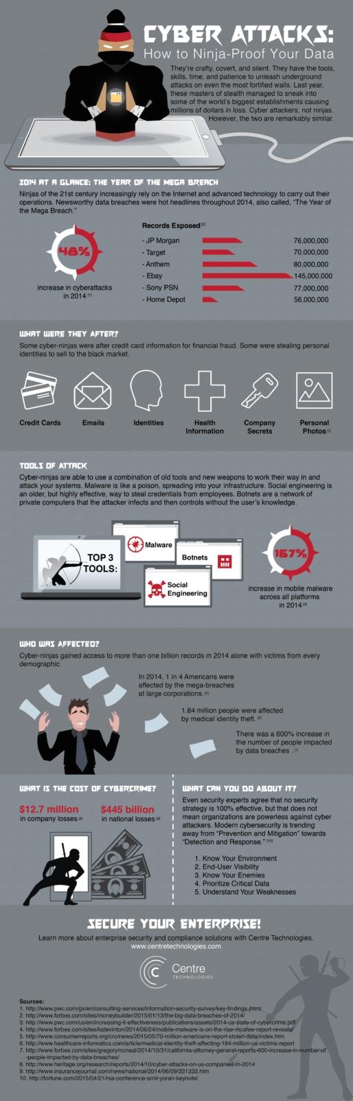 Ninja-Proof Your Data Infographic - Cybersecurity